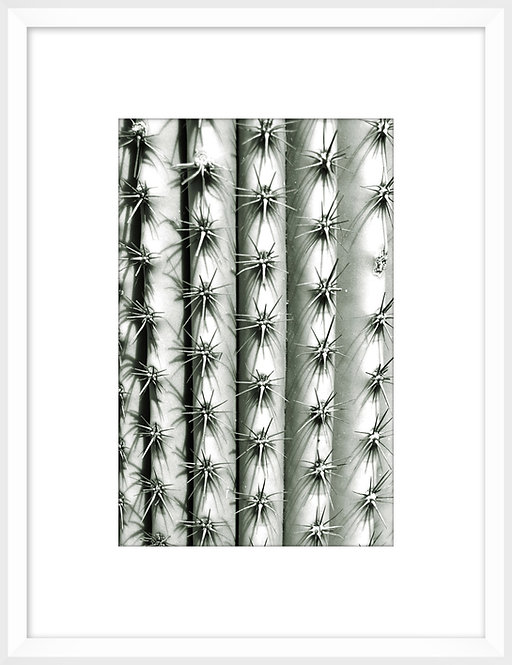 Silver Spikes Small 3