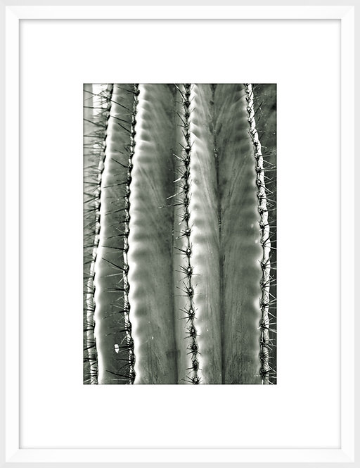 Silver Spikes Small 1