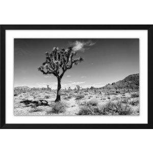 Desert Dusk 1