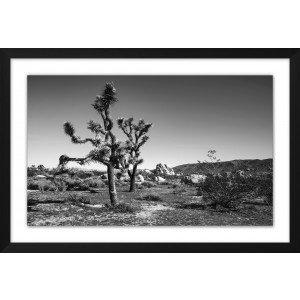 Desert Dusk 2