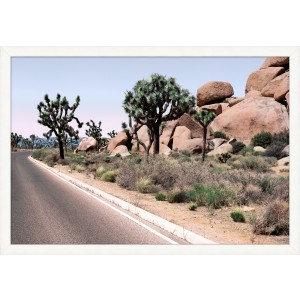 Desert Landscape 4