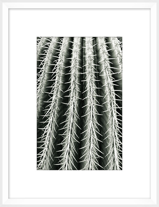 Silver Spikes Small 6