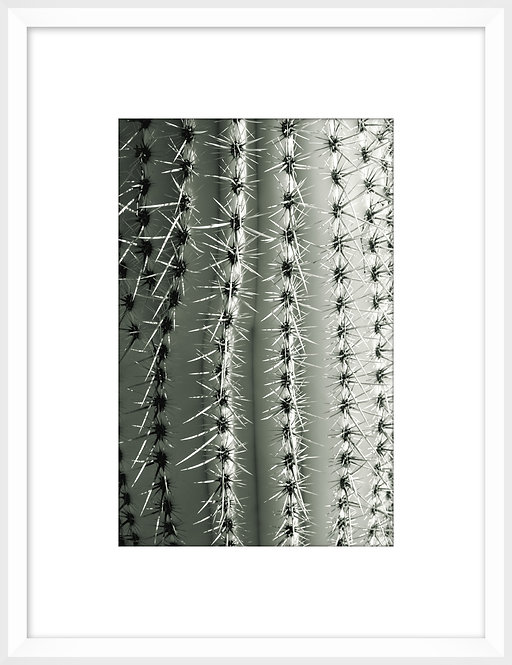 Silver Spikes Small 2