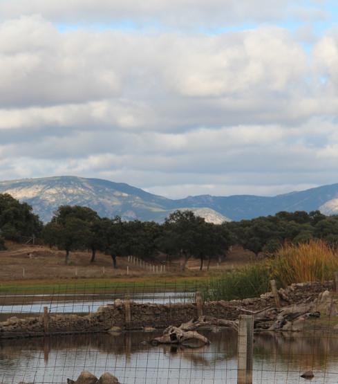 Uitzicht Spanje
