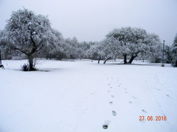 Parque Nevado 2