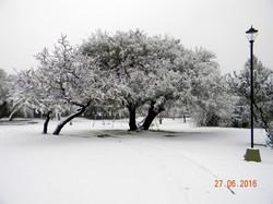 Parque Nevado 6