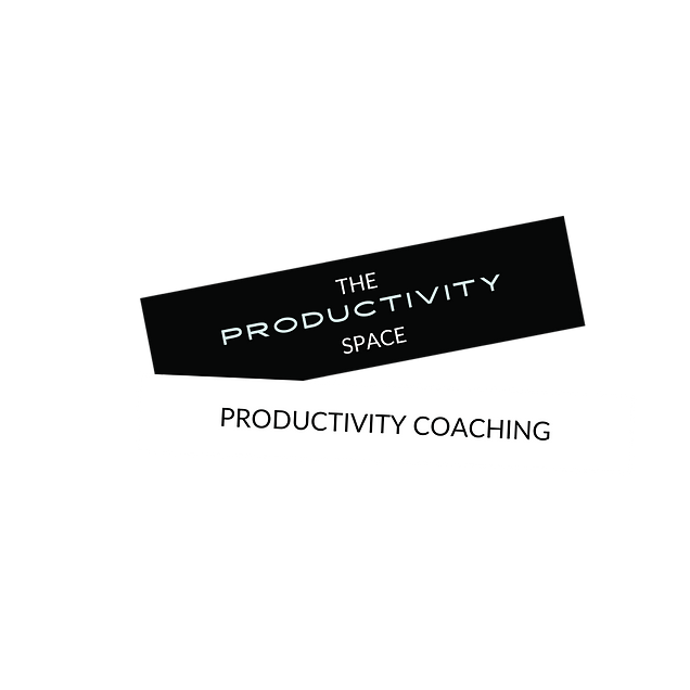 THE PRODUCTIVITY SPACE  WEBSITE LOGO TRA