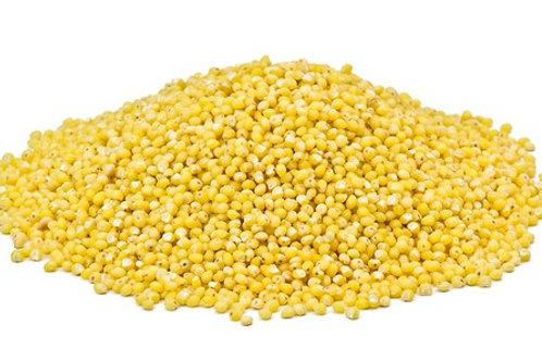 CA014 有機小米 Organic Millet 350g