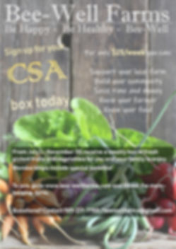 CSA Flyer.jpg