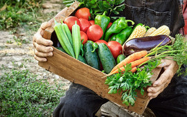 farmer-holding-csa-box.jpg