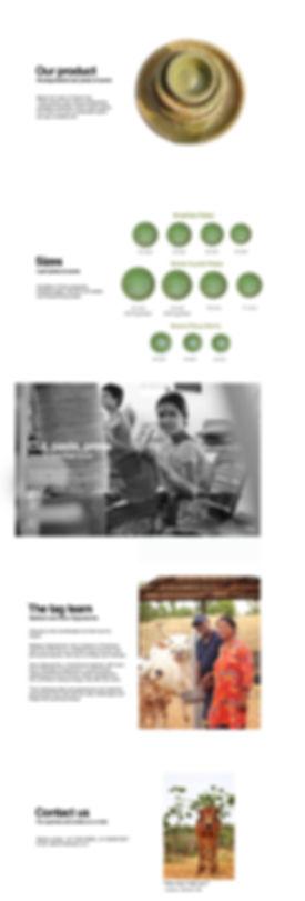 Vistaraku_webpage_3.jpg