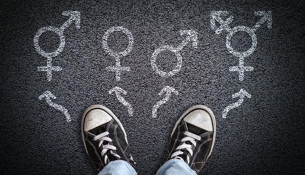 Gender dysphoria webinar