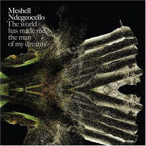 MESHELL NDEGEOCELLO - THE WORLD HAS MADE ME THE MAN OF MY DREAMS CD