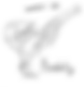 logo  trait noir.png