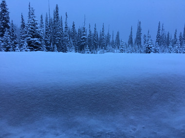 SST Backcountry Cat skiing