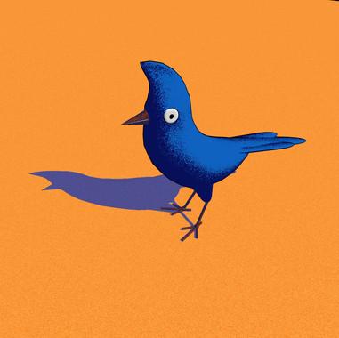 The birds song is incredible between 1am-3am : )