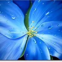 Blue flower oil on canvas painting