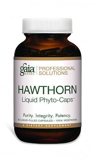 Hawthorn - 60 caps