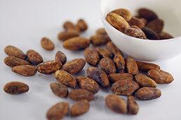 cocoa-beans-6347192_1920.jpg
