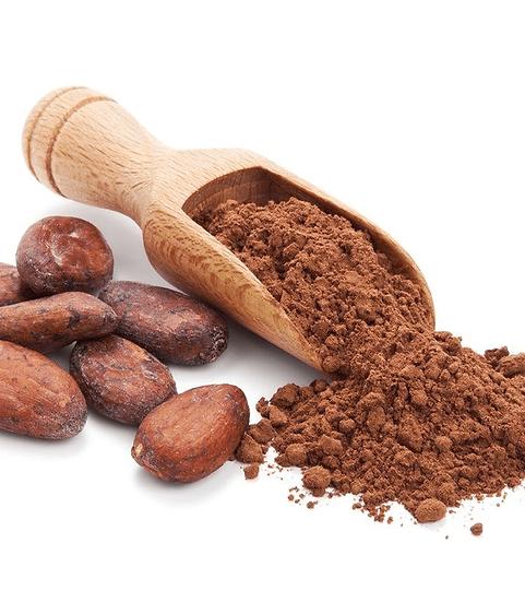 Peruvian Organic Criollo Cacao Powder - 4.4 lbs