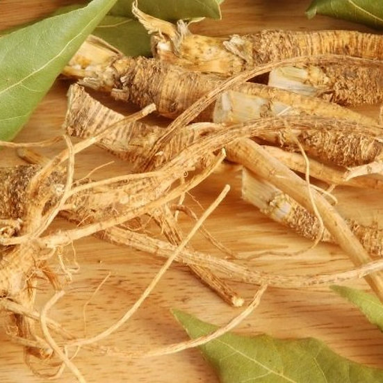 Suma Root 500 mg - 100 caps