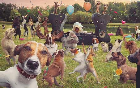 dog+party.jpeg