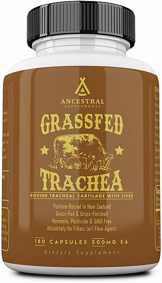 Grass-Fed Trachea - 180 caps
