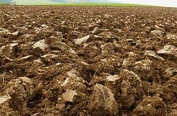 soil-g502a510a3_1920.jpg