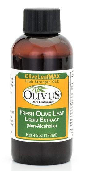Fresh Olive Leaf Extract A/F - 4.5 oz