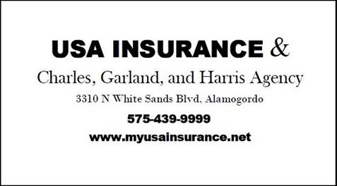 2020 Sponsor USA Insurance.png