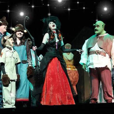 Wicked Witch - Shrek 2018