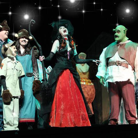 Wicked Witch - Shrek 2018
