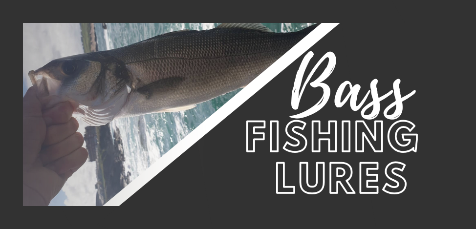 Bass Lures - Category Page Banner.png