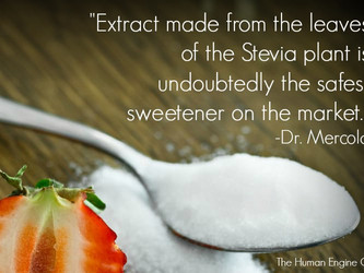 Artificially Sweet?