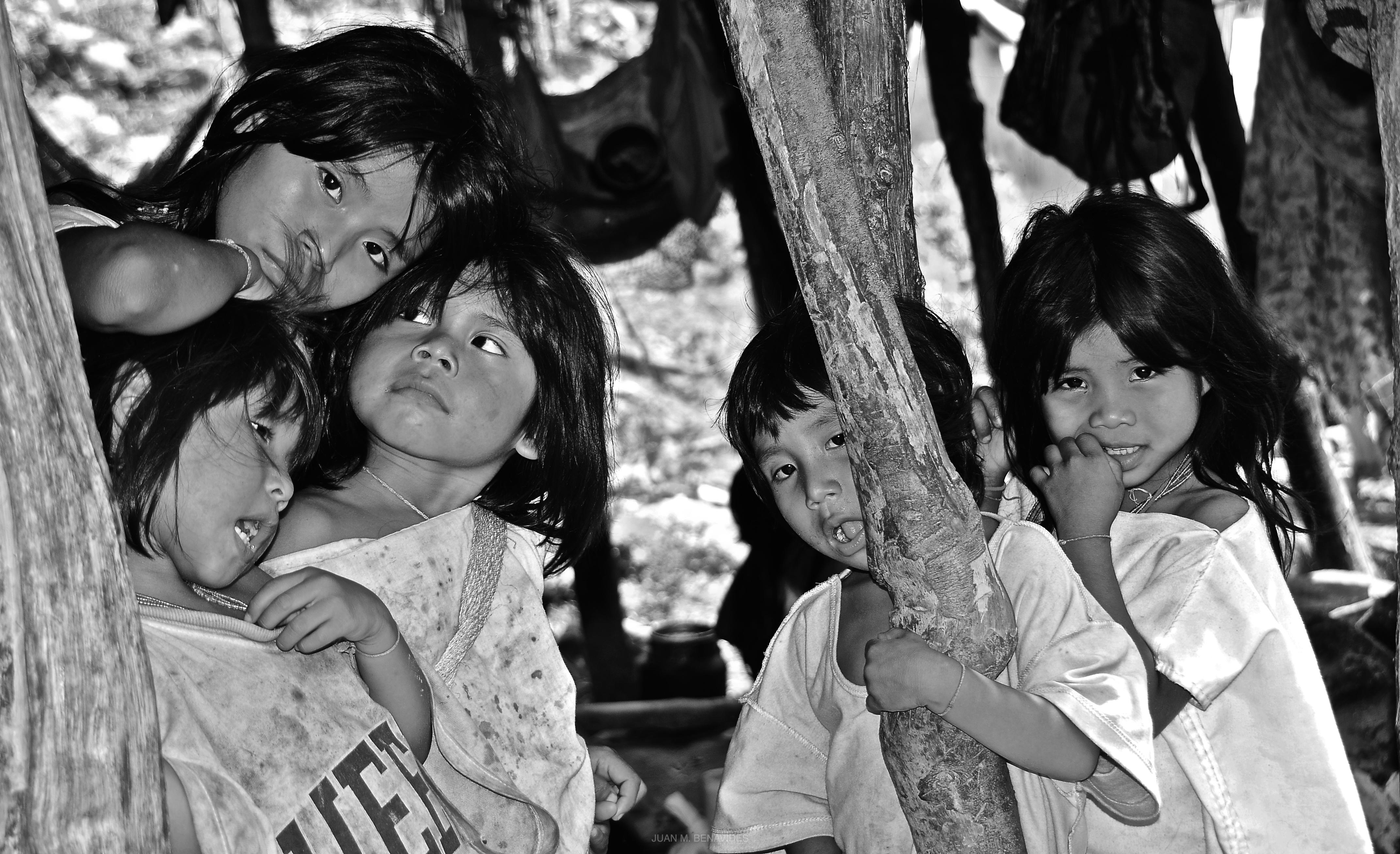 niñas indigenas