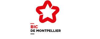 logo-bic.jpg