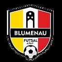 Blumenau Futsal.png