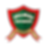 Logo Palmas Esportes.png