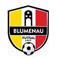 Blumenau Futsal.jpg