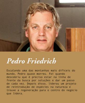 Pedro Friedrich.png