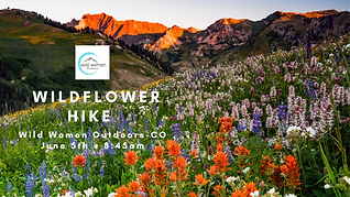Wild Flower Hike-CO.png