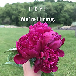 Now Hiring Landscaping jobs  Mars, Cranberry Township, Evans City, Gibsonia, Butler, Pittsburgh, Wexford