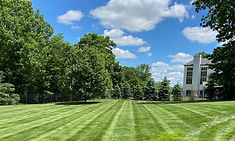 Grass Cutting, Lawn Mowing, Lawn Care
