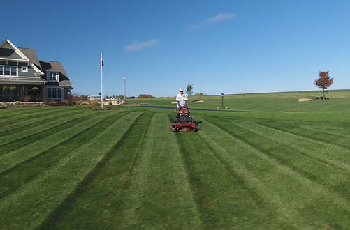 Grass Cutting and Lawn Care Near Me
