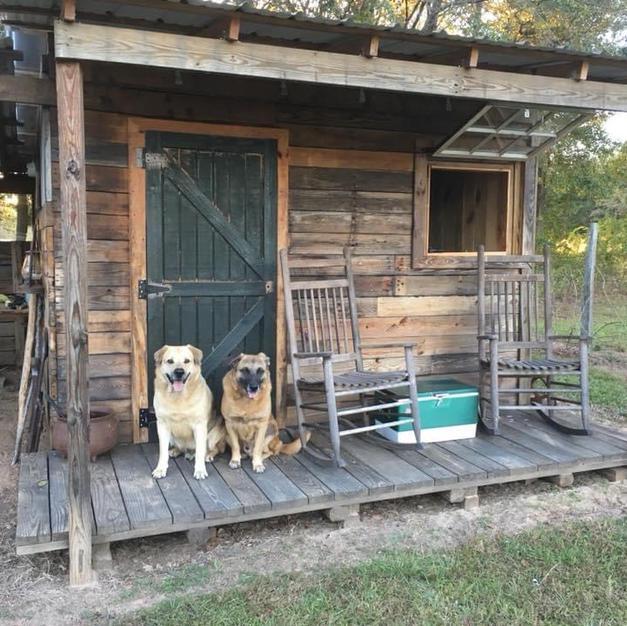 Brigg and Boone