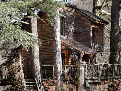 Une cabane perchée et écolo