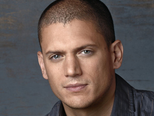 Wentworth Miller Comes Out as Gay in Letter Slamming Russia's LGBT Crackdown