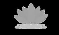 white lotus tspbkgd.png