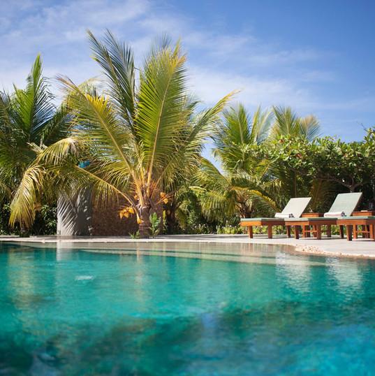 Wild Lotus Villa pool