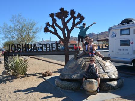 Joshua Tree national Park : du 26 au 28 Nov 17